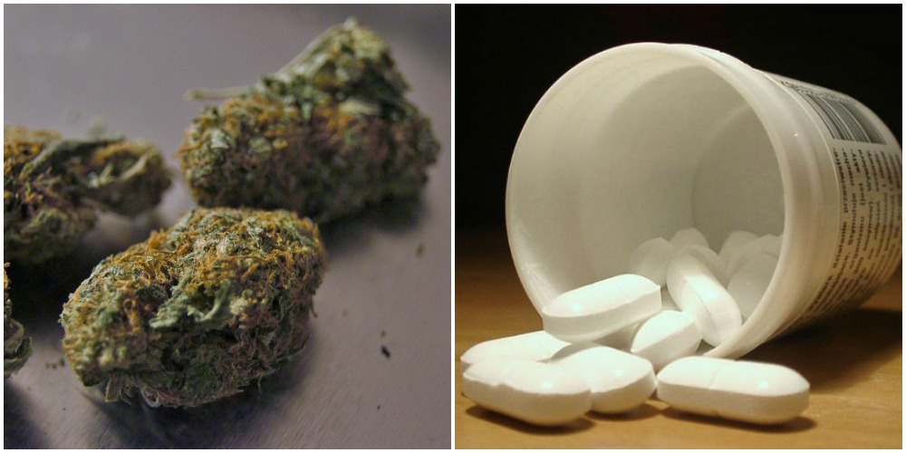 Marijuana and Opioid Use Cause Fatal Car Accidents